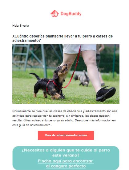 Cómo_fidelizar_clientes_email_marketing_dogbuddy.png